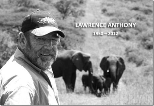 Una vida dedicada a proteger a los elefantes